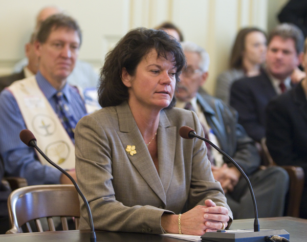 Irene KRopp, Assistant Commissioner for Site Remediation testifies in support of S3040 today