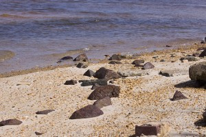 lead slag dumped on beach, leaches lead