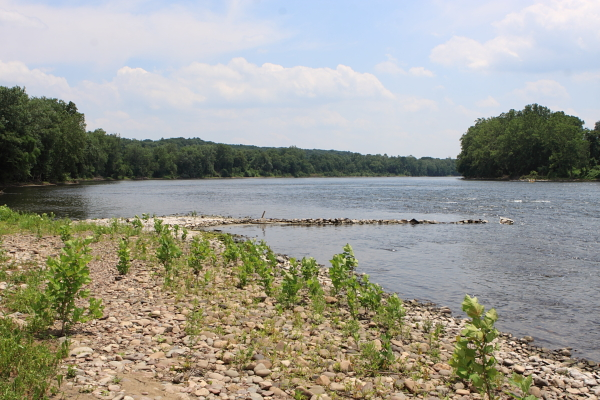 Delaware River, adjacent to landfill. Delaware is important water supply for downriver communities.
