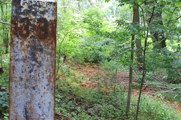 "Old mileage marker rusts (forground) - DEP leachate ""rust"" kills nearby vegetation along southern edge of landfill, just 75 feet from Delaware River."