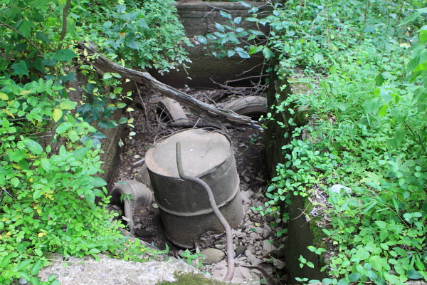 drums at south western toe of slope, along D&amp;R Canal path by pedestrian bridge