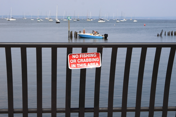 Raritan Bay, Keyport. Too polluted for fish, shellfish, people and other living things