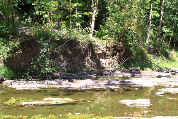 Wicheoke - one benefit of no stream flow: it allows one to see the serious bank erosion.