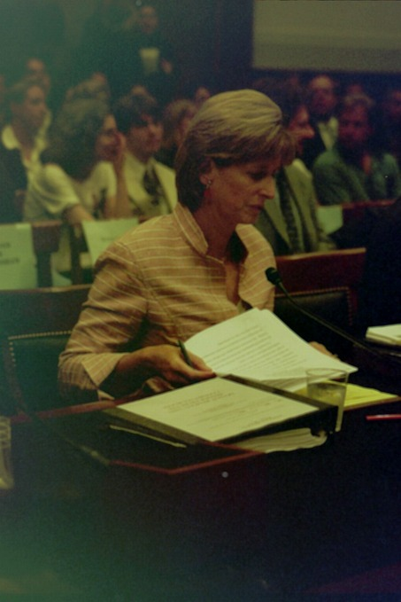 Whitman testifies before House Judiciary Committee on her post 9/11 remarks