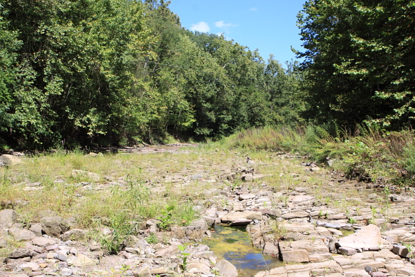 Wickeoke Creek stream bed. No flow. Delaware tributary just north of Alexauken. Enters Delaware at Praulsville Mills