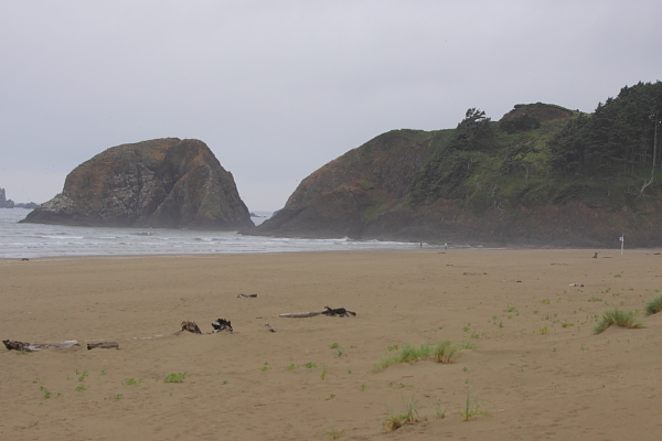 oregon coast4
