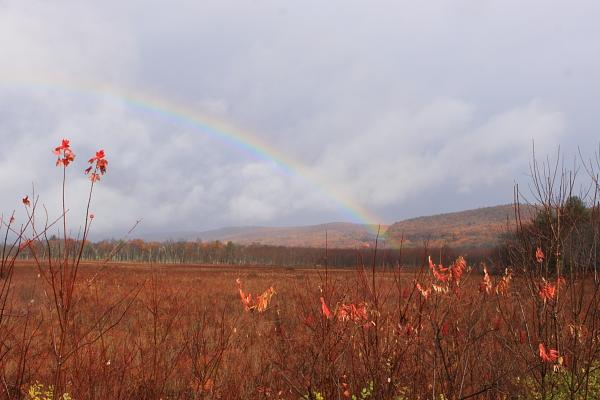 rainbow over Catskills