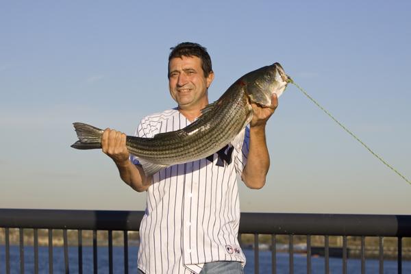 Raritan River striped bass