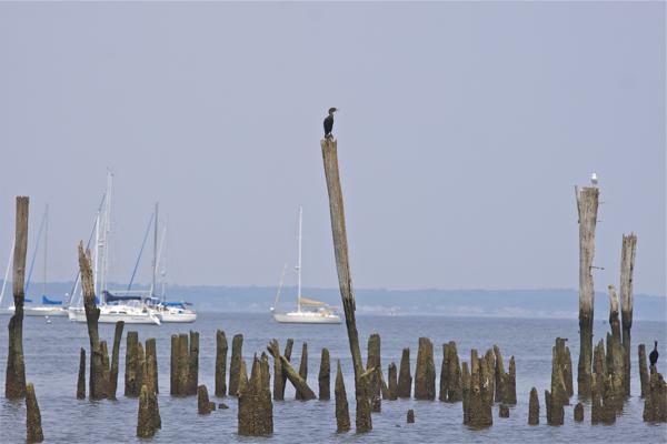 Raritan Bay