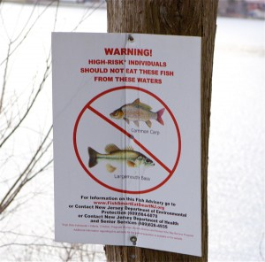 fish consumption advisory - Loss of access to the fishery is a natural resource injury that Dupont must compensate the public for.