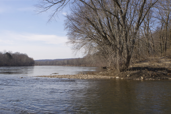 Delaware River, looking north, at confluence of Wickecheoke Creek