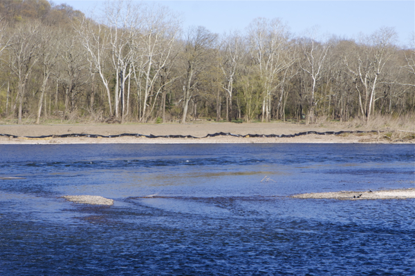View from Pa. of Bulls Island riverfront bulldozing and fill. Note contrast between fill area and natural vegetation.