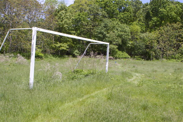 Dupont Filed (May 11, 2012) - the only grass mowed was a narrow path to the groundwater monitoring wells.