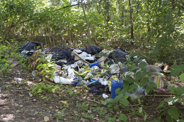 garbage illegally dumped along D&R Canal State Park path on Duck Island (8/26/14)