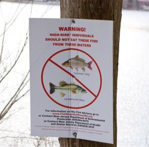 fish consumption warning posted on Pompton Lake
