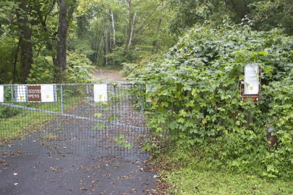 """Even the """"Area Closed"""" signs are overgrown by weeds"""