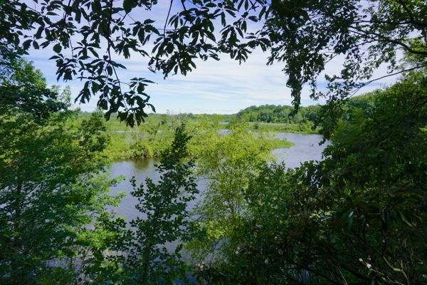 Bordentown Bluffs trail - Crossweeks creek peeks out - Trenton-Hamilton Marsh view