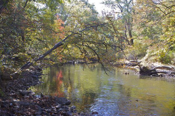 Paulinskill River (a C1 water)