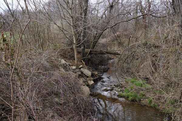stream is tributary to Suckers Run - DEP not enforcing Surface Water Quality Standards or riparian zone (buffer) protections