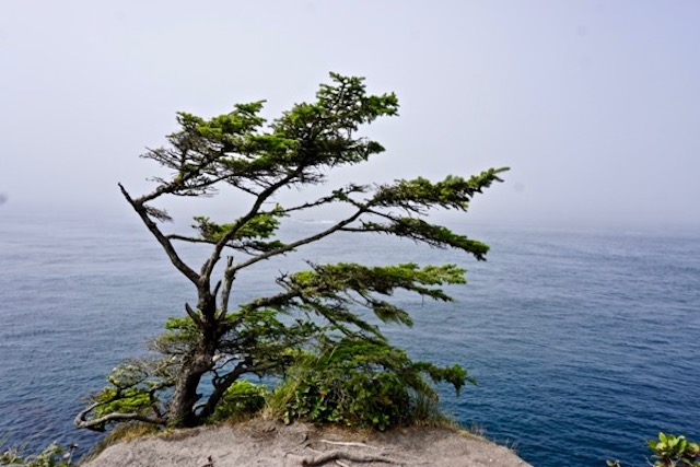 Cape Flattery, most northwestern point on mainland US