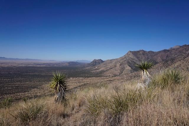 US - Mexican Border runs through it - Looking west from Montezuma Pass, in Coronado Point in Coronado National Memorial (Az)