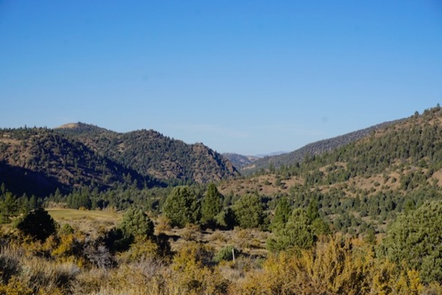 X National Forest - extremely dry conditions