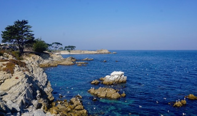 Monterey Bay, looking at Lovers Point in Pacific Grove, California