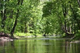 Not Rockaway Creek, but nearby Stonybrook