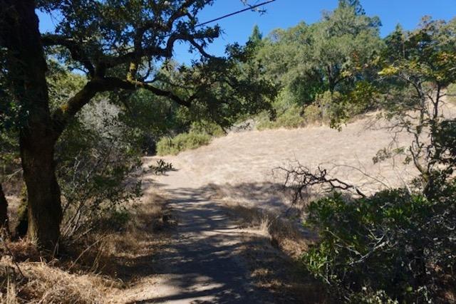 Conditions very dry - London Ranch, Glen Ellen, Sonoma County